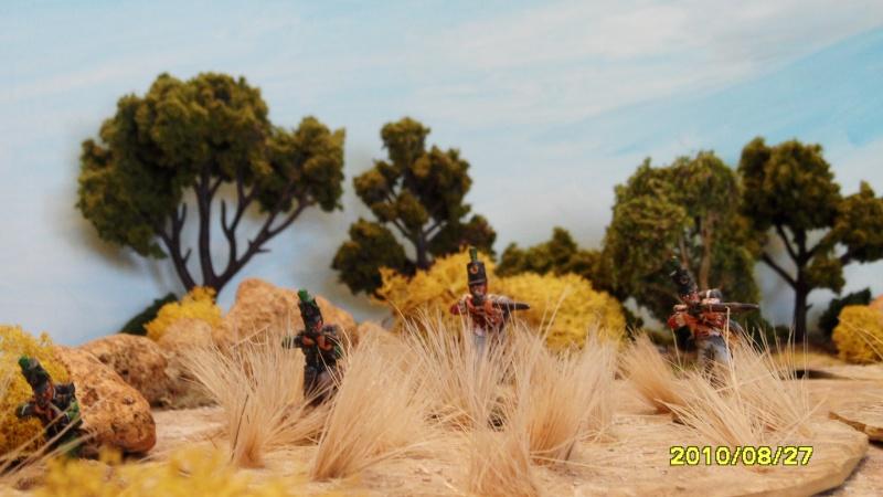 La règle de la NBS et le problème du combat napoléonien colonne d'attaque contre ligne anglaise perchée sur colline Sam_1831