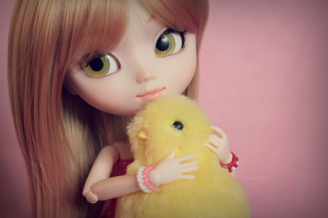 Présentation de mes dolls ^-^  [Pullip, Dal, Taeyang] Img_7410