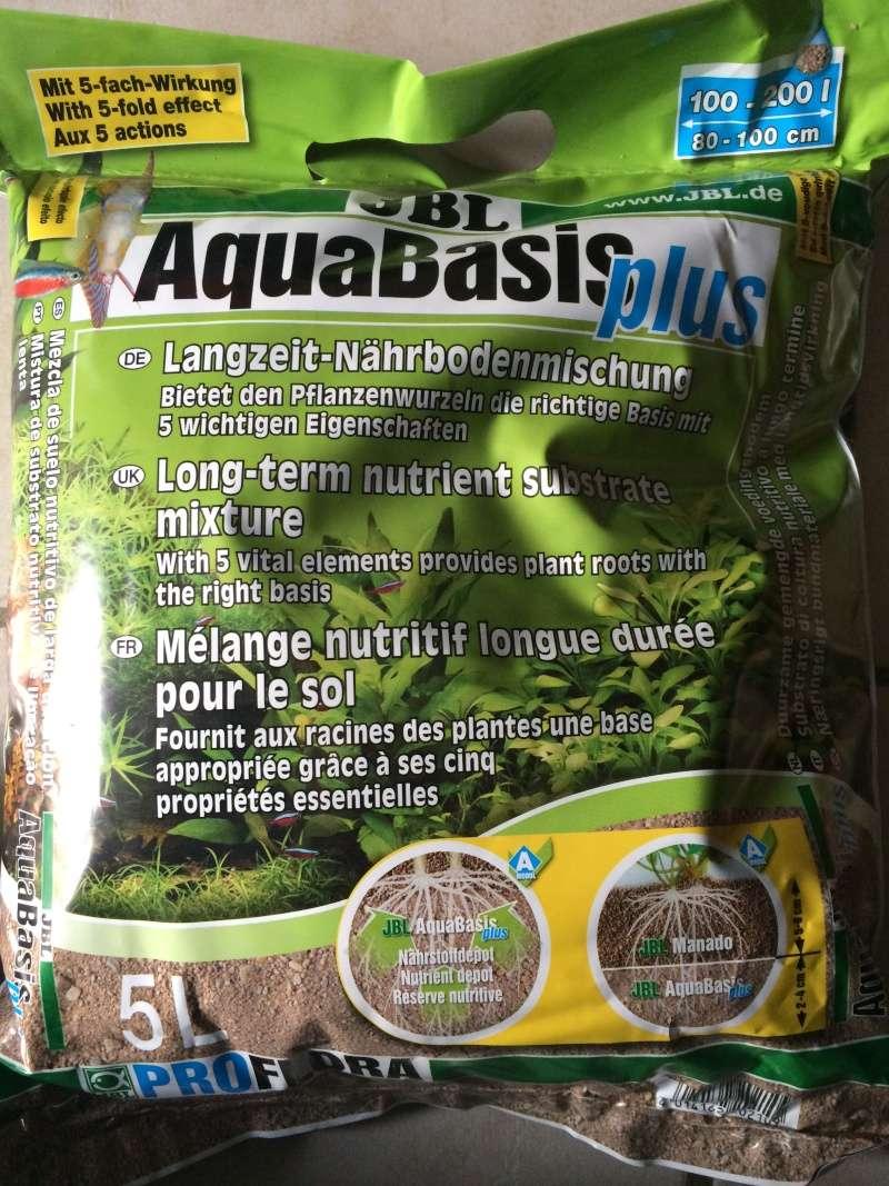 1er aquarium: OBJECTIF Amazonien!!!!!! Img_0216