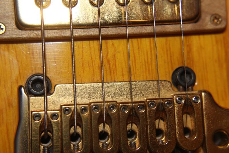 Photos de vos guitares. - Page 40 Img_3010