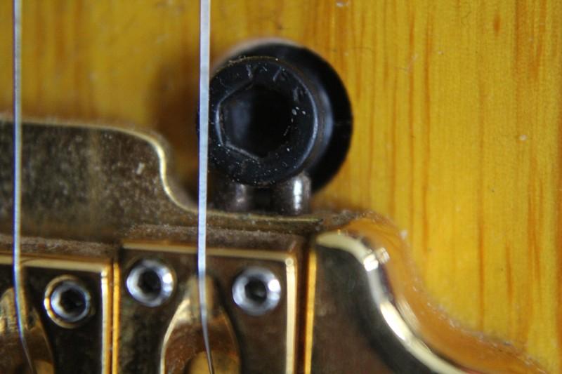 Photos de vos guitares. - Page 40 Img_3011