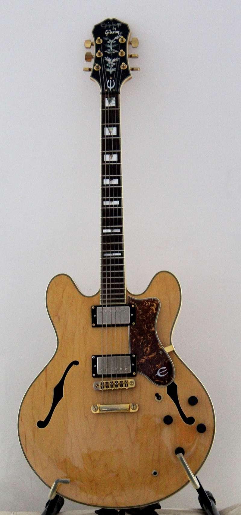 Photos de vos guitares. - Page 39 Sherat11