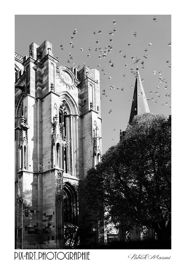 Le cloché du village - Page 3 Pix-ar16