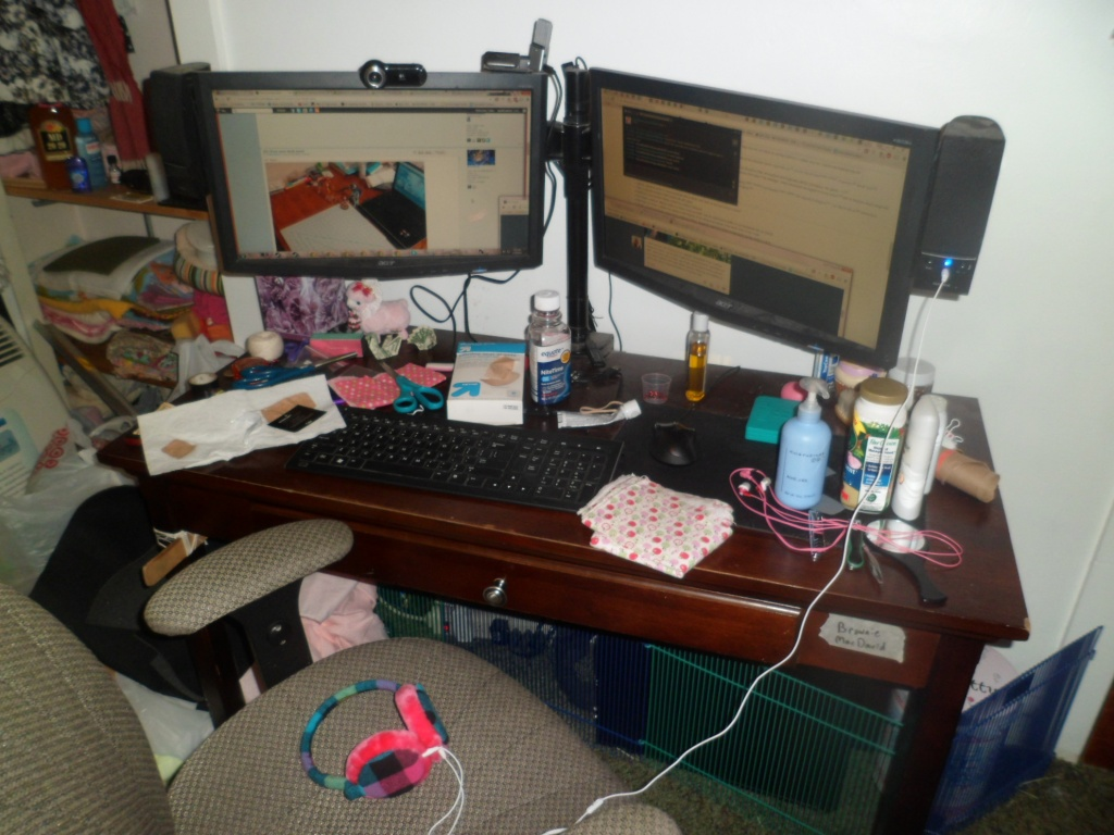 Post your desk area! - Page 3 Sam_4510