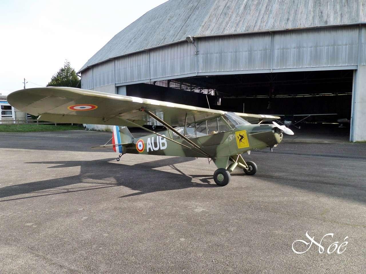 piper PA-19 F-BOER à Rennes  Ddfd10