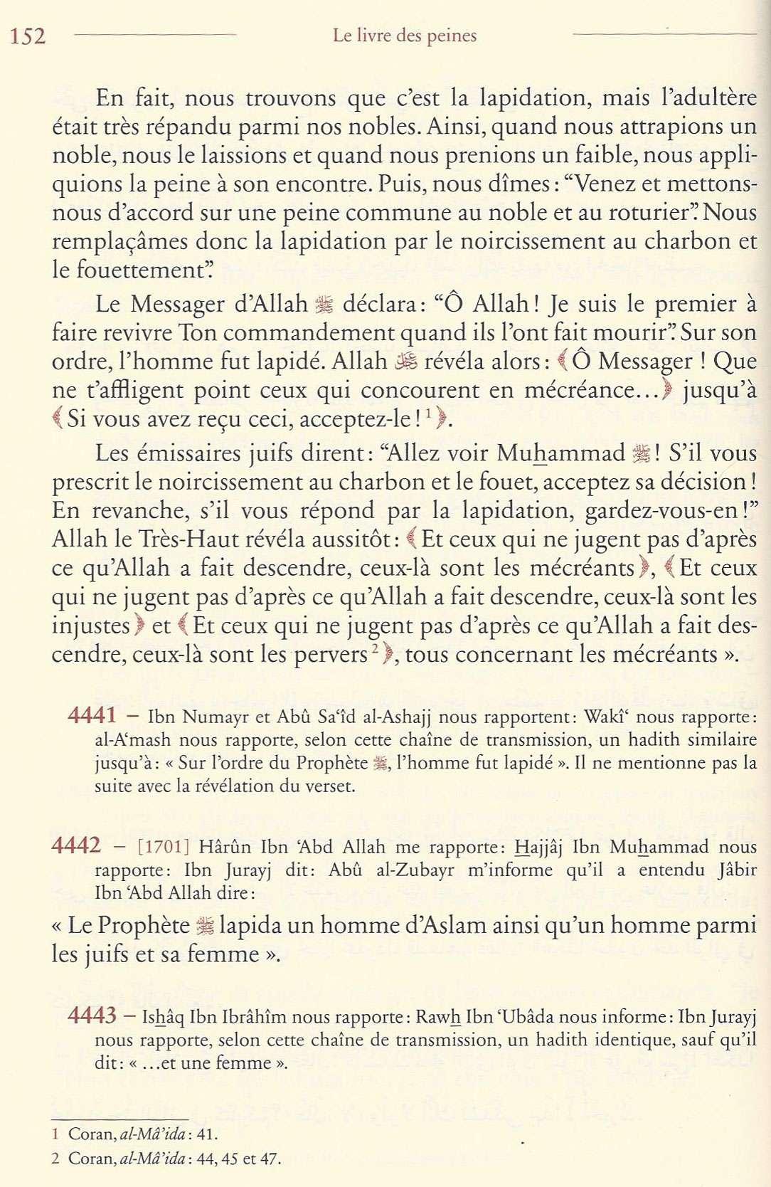 LAPIDATION Muslis21