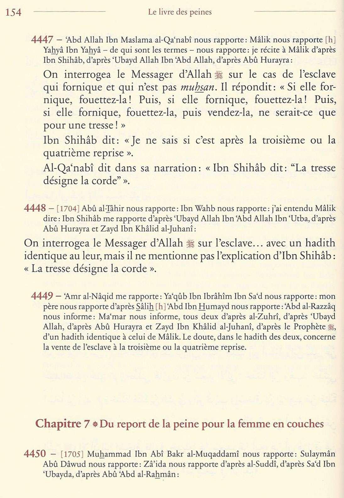 LAPIDATION Muslis23