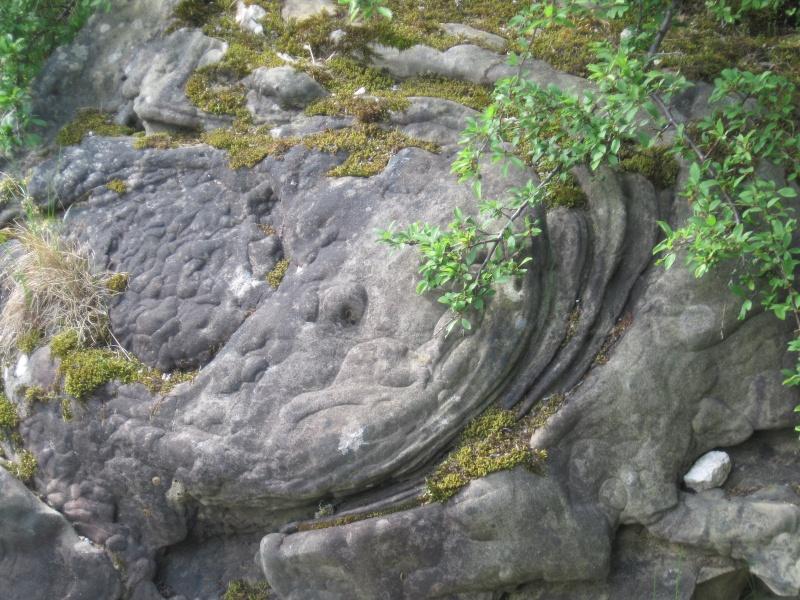 Formation originale d'un grès de l'Auversien Img_7110
