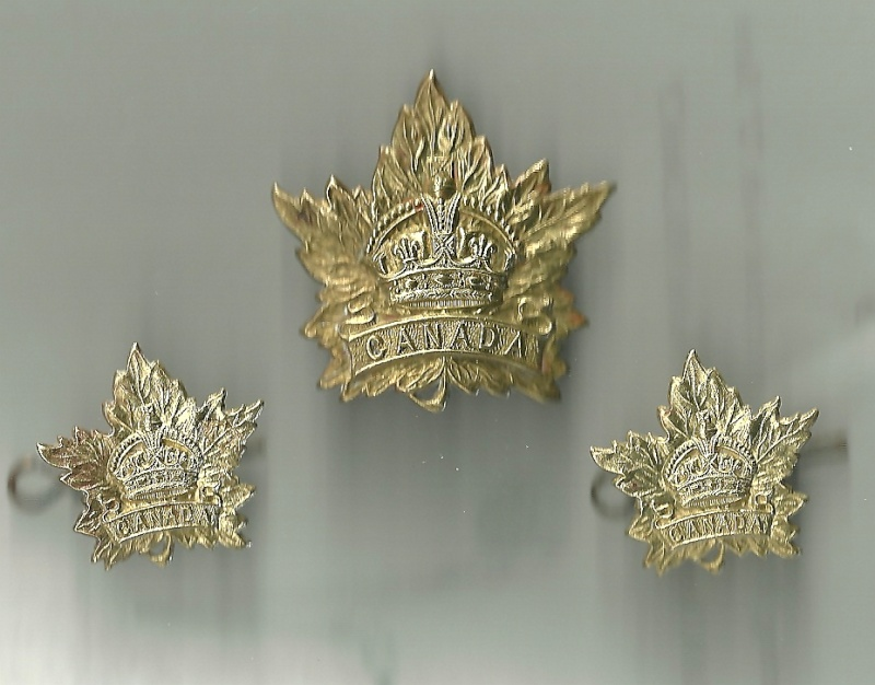 Help with these CEF maple leaf badges Cef_ma14