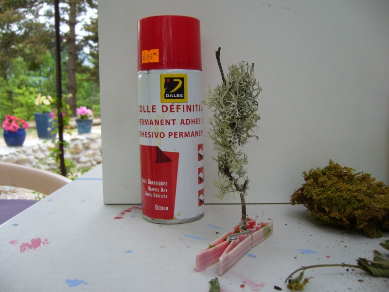 """Réalisation d'arbres """" a ma sauce"""" d'autodidacte P1020324"""