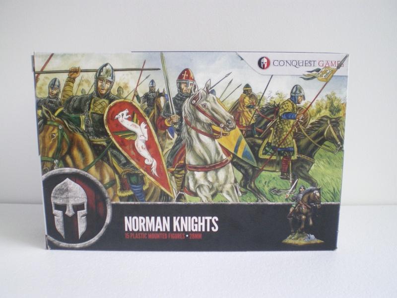 Normands pour SAGA Imgp0812