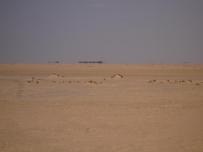 Tour Tunisie 3 Tunis105