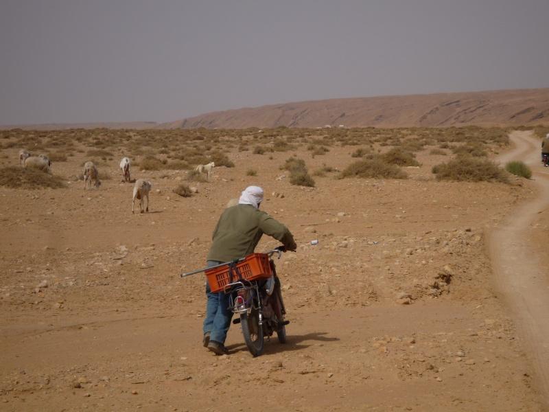 Tour Tunisie 3 Tunisi96