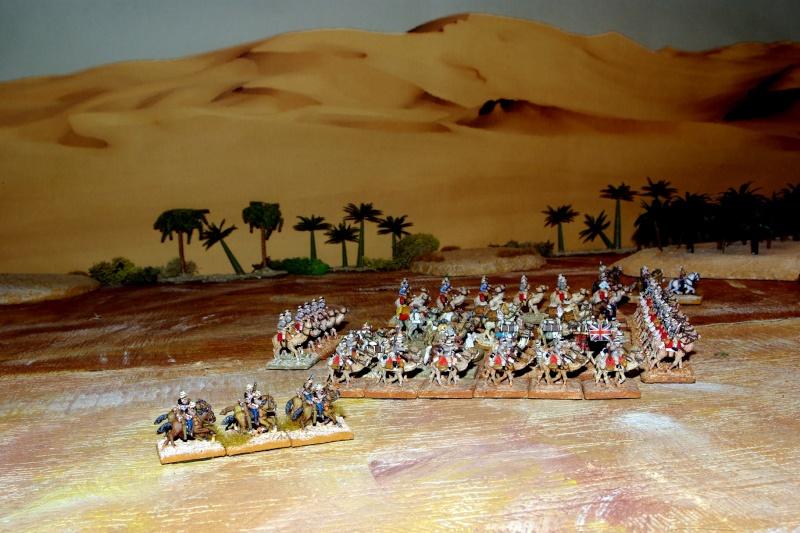 camel corps en mouvement  Imgp4611