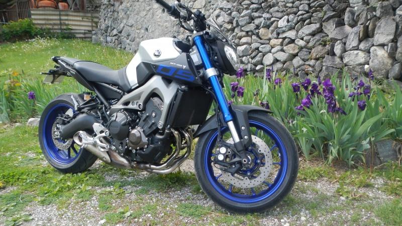 Race Blu fleur bleue  Dscn2315