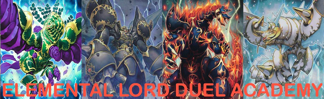 Elemental Lord Academy