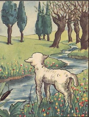 De l'agneau et du renard. Le_lou10