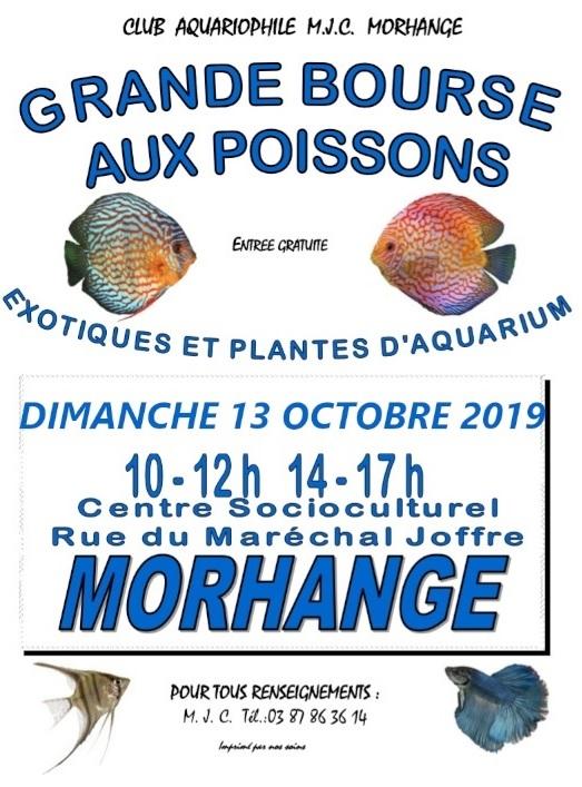 Bourse de Morhange le dimanche 13 octobre Bourse11
