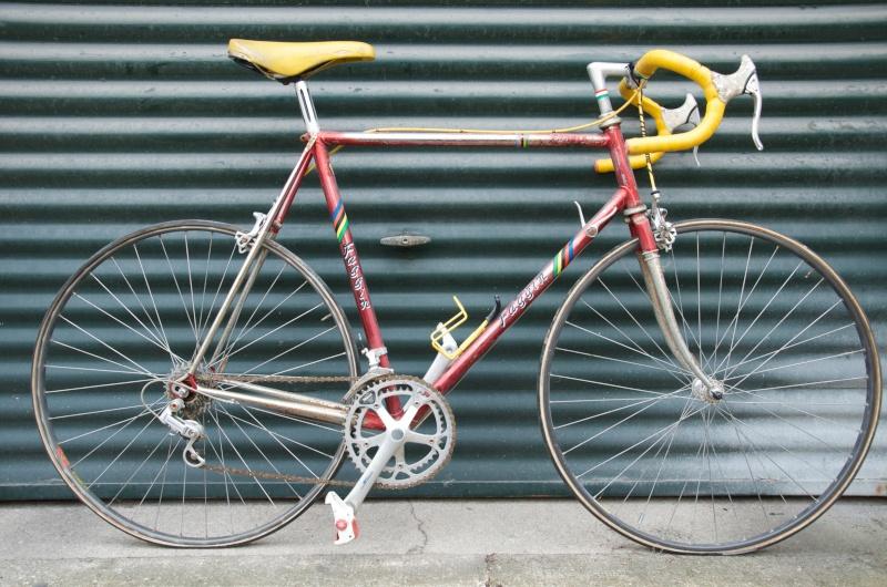 Faggin (1987-88) Dsc_4612
