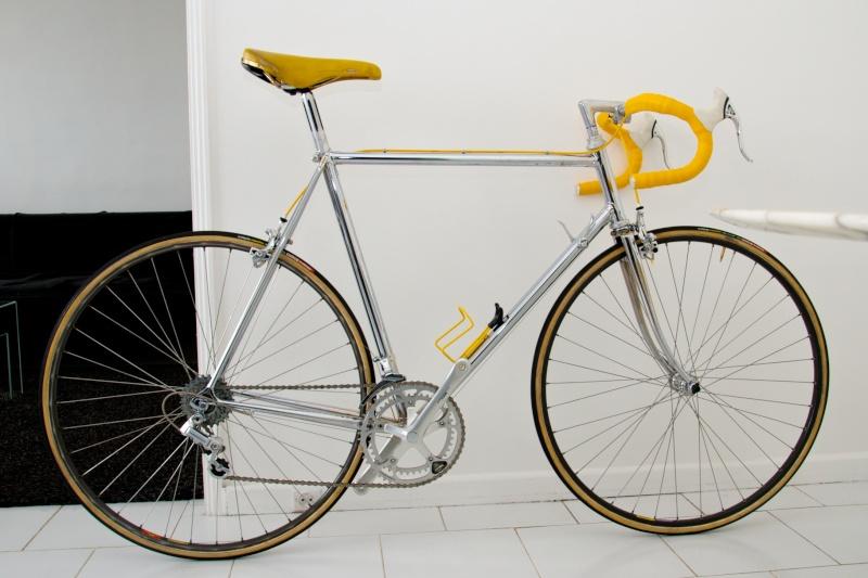 Faggin (1987-88) Dsc_4616