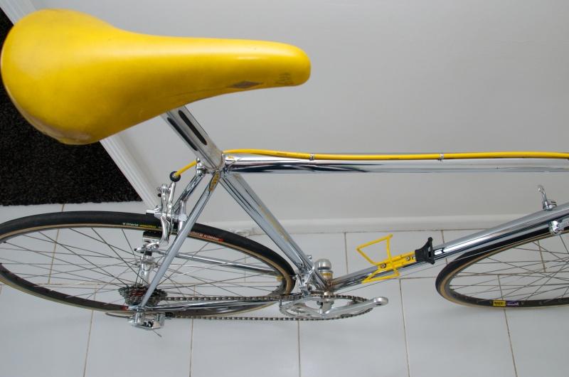 Faggin (1987-88) Dsc_4619