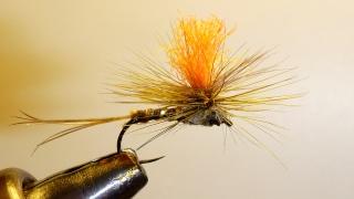 nymphe - Pêche en nymphe au toc Ephymy10