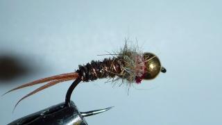 nymphe - Pêche en nymphe au toc Pheasa12