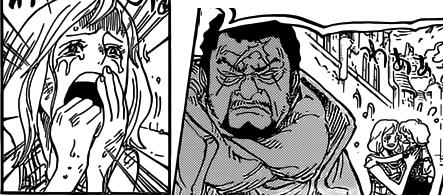 One Piece Kapitel 785: Selbst mit gebrochenen Beinen - Seite 3 1010