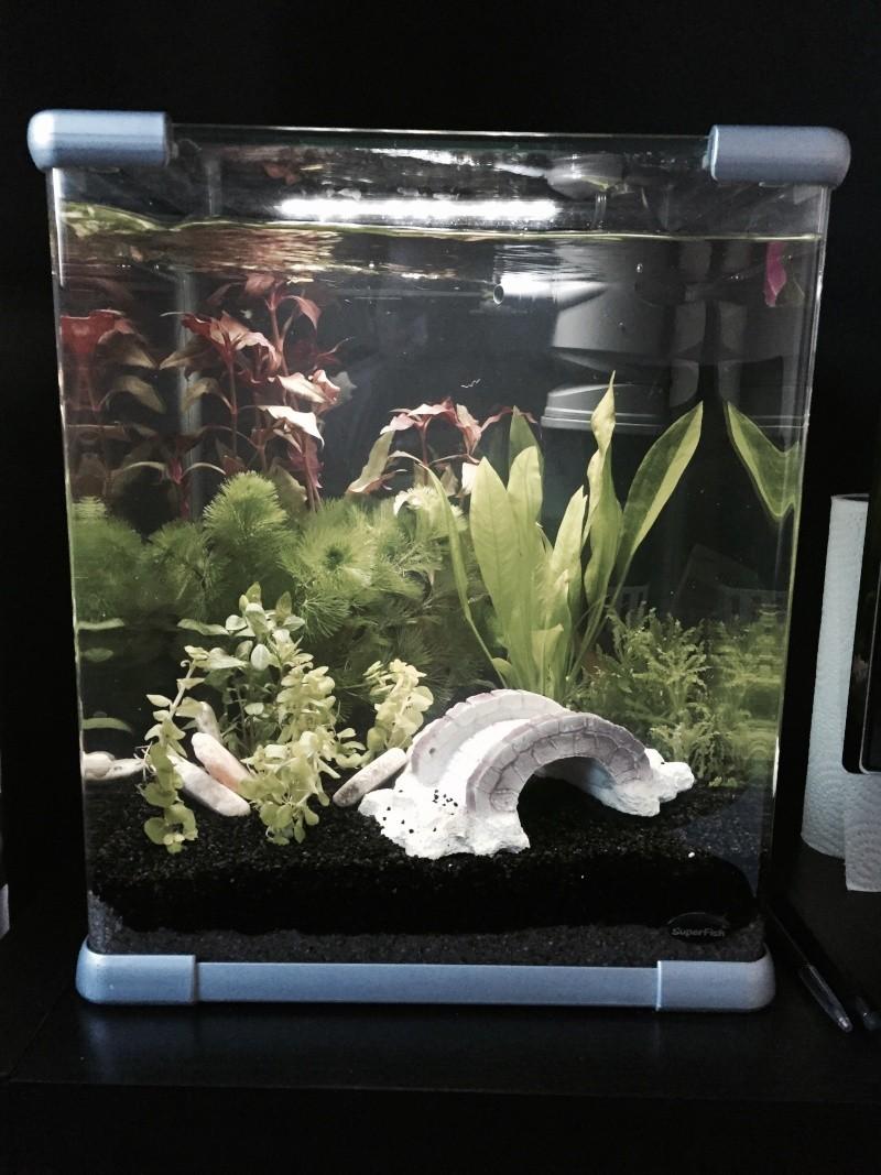 Aqua 60 L Fullsi10