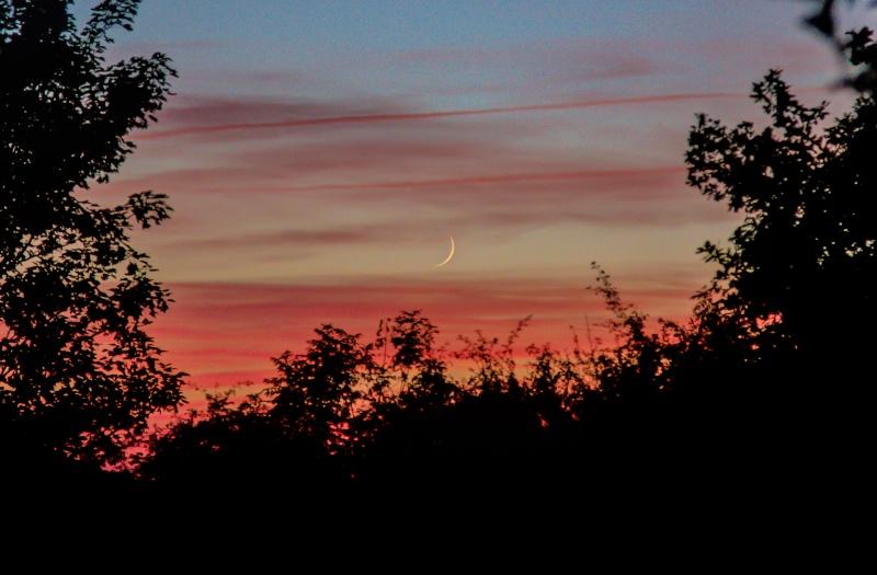 Petite lune en soirée 04812