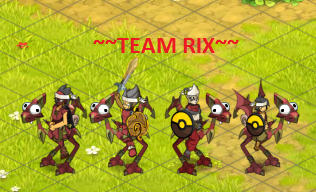 Candidature Team Rix Teamri10