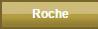 Amphinobi / Greninja Roche10