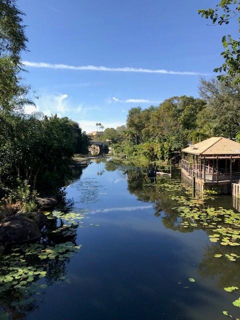 [TR] Un mini séjour découverte de WDW et Universal Studios Orlando - Universal Hard Rock Hotel / Disney's Contemporary Resort / Disney's Boardwalk Inn - Page 4 Img_7745