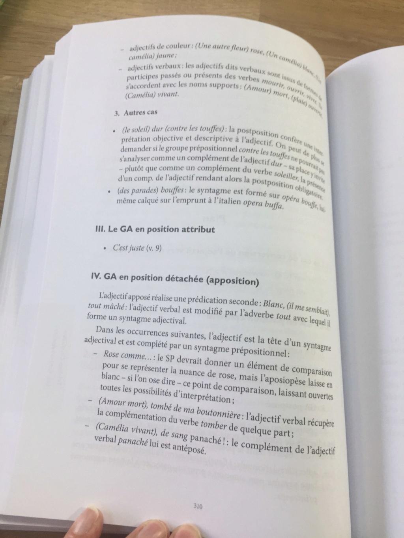 Agreg interne LM 2020 : entraînement en grammaire - Page 7 60822813