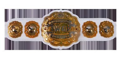 Asylum Belts Cup - Saison 1 [Tournoi] Iwgp_i12