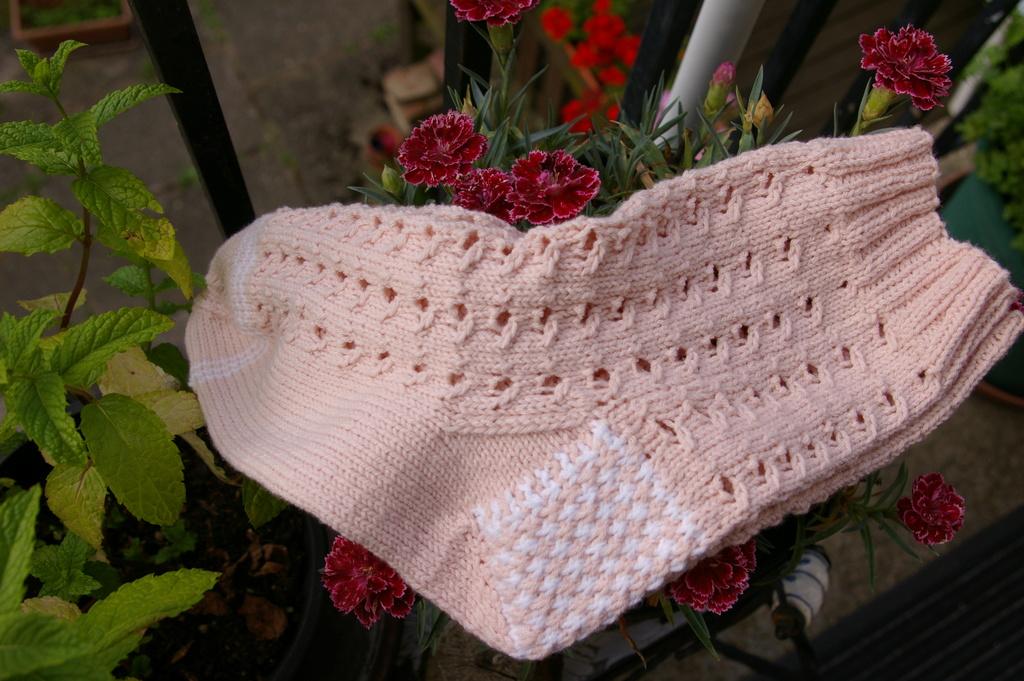 chaussettes en coton ... Imgp9111