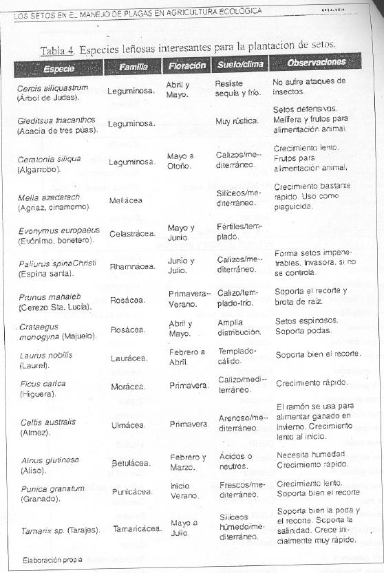Asociaciones de árboles y plantas . Asocia11