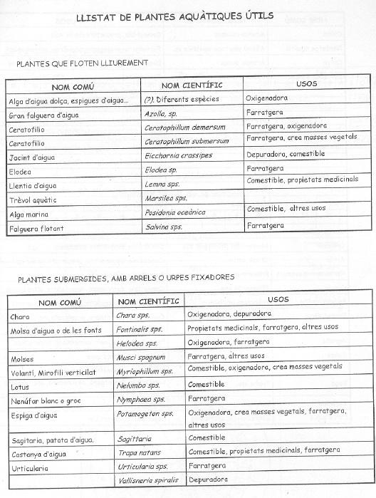Asociaciones de árboles y plantas . Asocia13