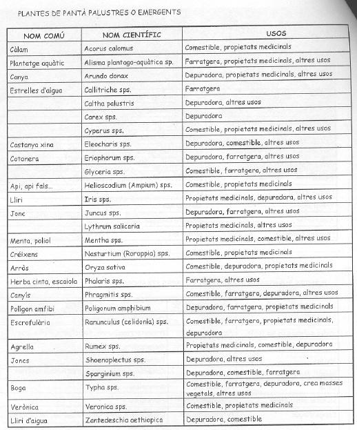Asociaciones de árboles y plantas . Asocia15
