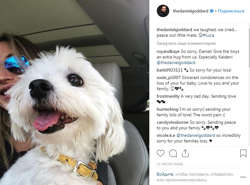 Молодые и Дерзкие в Instagram - Страница 4 Pet10