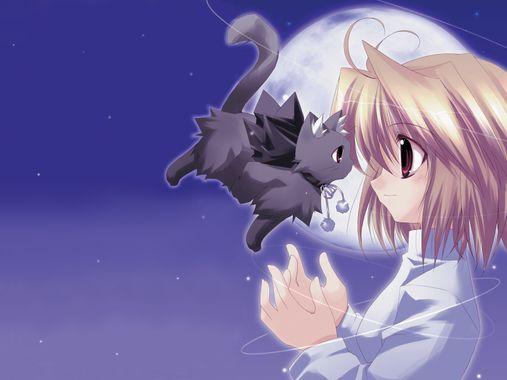 Bonjour et bienvenue  - Page 3 Anime_10