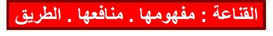 الكنز المفقود Kanaa10