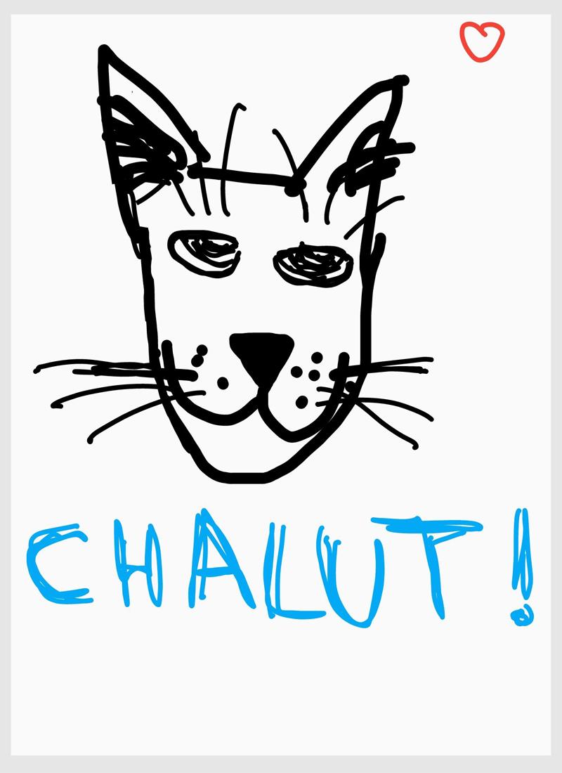 Présentation Chalut10