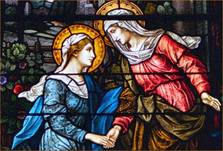 L'ANNÉE MARIALE par la Mère de Chaugy - Page 27 La_vis12