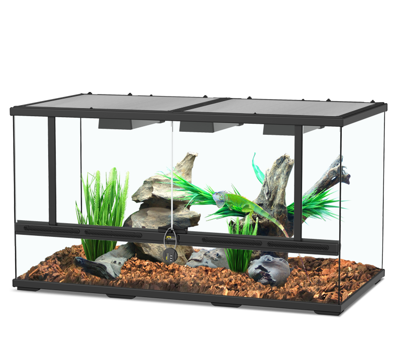 terrarium terratlantis  Terrar10