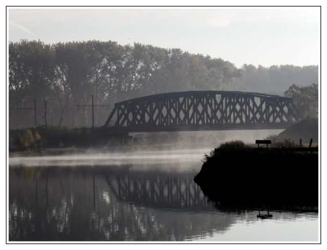 Brume au petit matin P1010214
