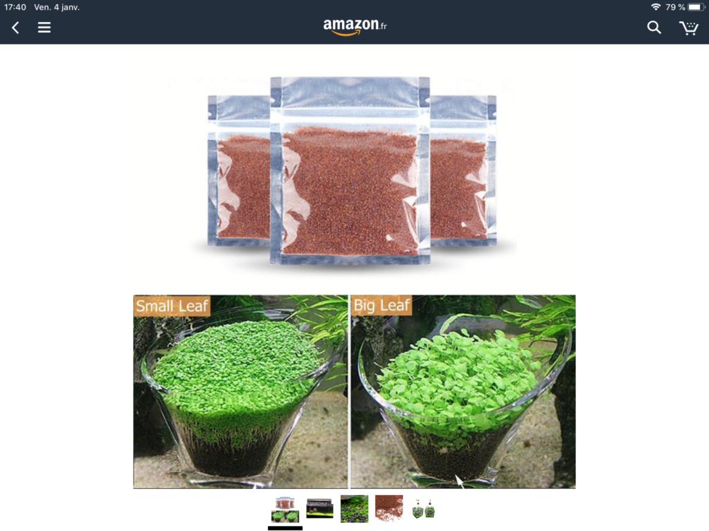 Plantes en Graine sur internet 463e3210