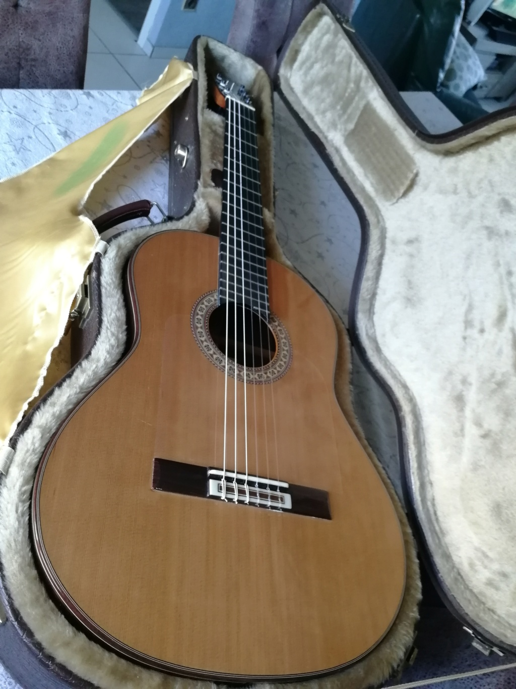 Nouvelle guitare  Img_2013