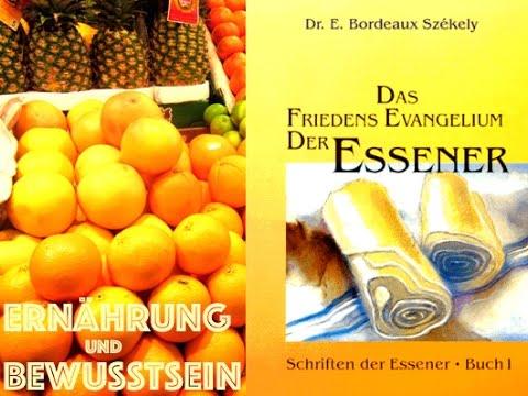 Einleitung betr. der Essener Schriften Essene10