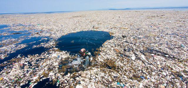 Immer sind die anderen Schuld - Plastikmüll betrifft alle Plasti11